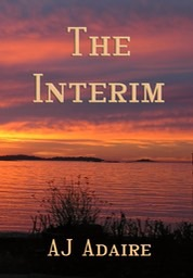 ebook-the-interim 89 hr